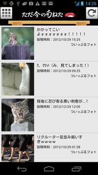 暇人専用 旬の面白ネタ・猫・犬画像まとめアプリ ねたっぷる poster