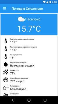 Погода в Смоленске 海报