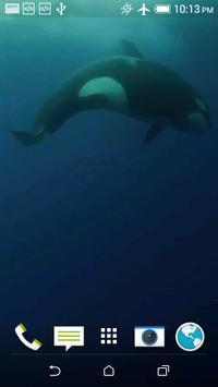 Orca 3D Video Wallpaper screenshot 2