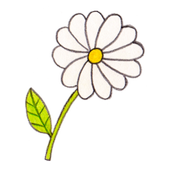 Flower - Flower delivery icon
