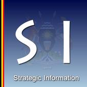 Strategic Information icon