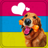 Dog Breed Chooser icon