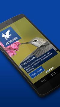 iKnow Birds 2 LITE - USA poster