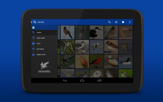 iKnow Birds 2 LITE - USA screenshot 10