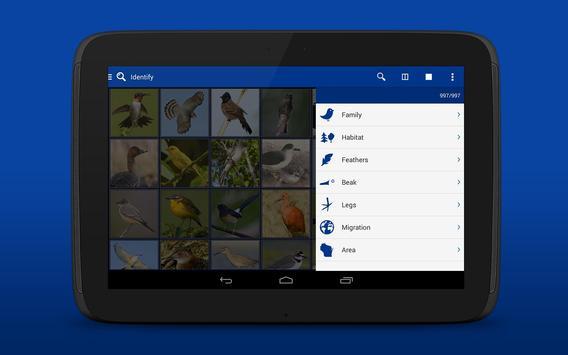 iKnow Birds 2 LITE - USA screenshot 13