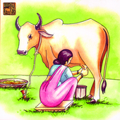 Story Of Milk A Cow's Tale(hi) icon