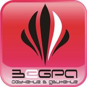 Зебра ЗДП icon