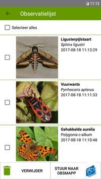 Identify - Papilionidae screenshot 2