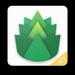 绿叶VPN