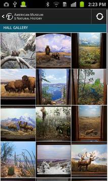 Hall of North American Mammals screenshot 1