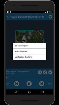 Kicau Burung Poksay Gacor Full Isian Lengkap screenshot 5