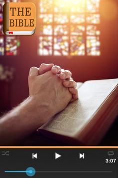 Bible KJV screenshot 2