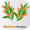 Healthy Quinoa Recipes simgesi