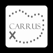 Carrus icon