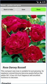 Roses - garden and grow screenshot 1