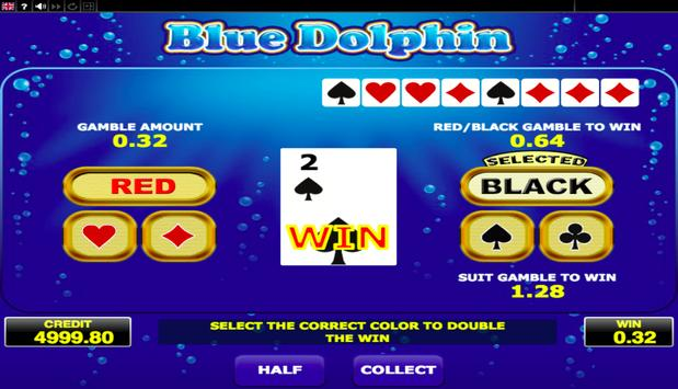 Blue Dolphin screenshot 8