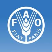 FAOnow icon
