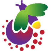 Firefly icon