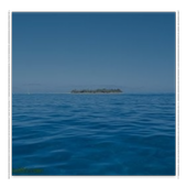 海洋浏览器 icon