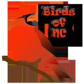 Backyard Birds of NC icon