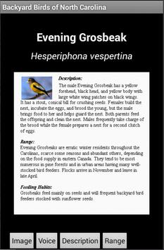 Backyard Birds of NC apk screenshot