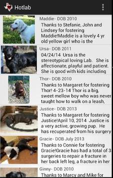 Heart of Texas Labrador Rescue poster