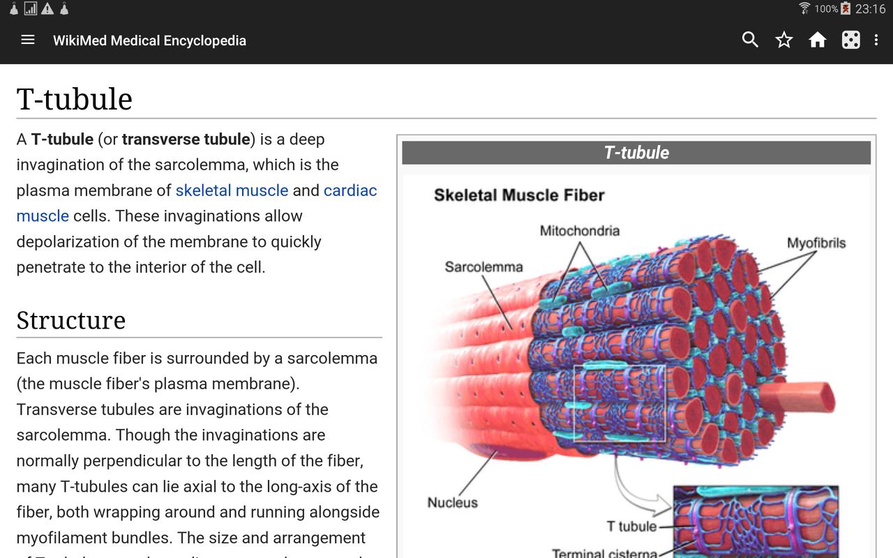 WikiMed - Offline Medical Wikipedia تصوير الشاشة 10