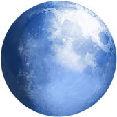 Pale Moon web browser icon