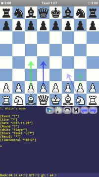 Texel 1.07 Chess Engine poster