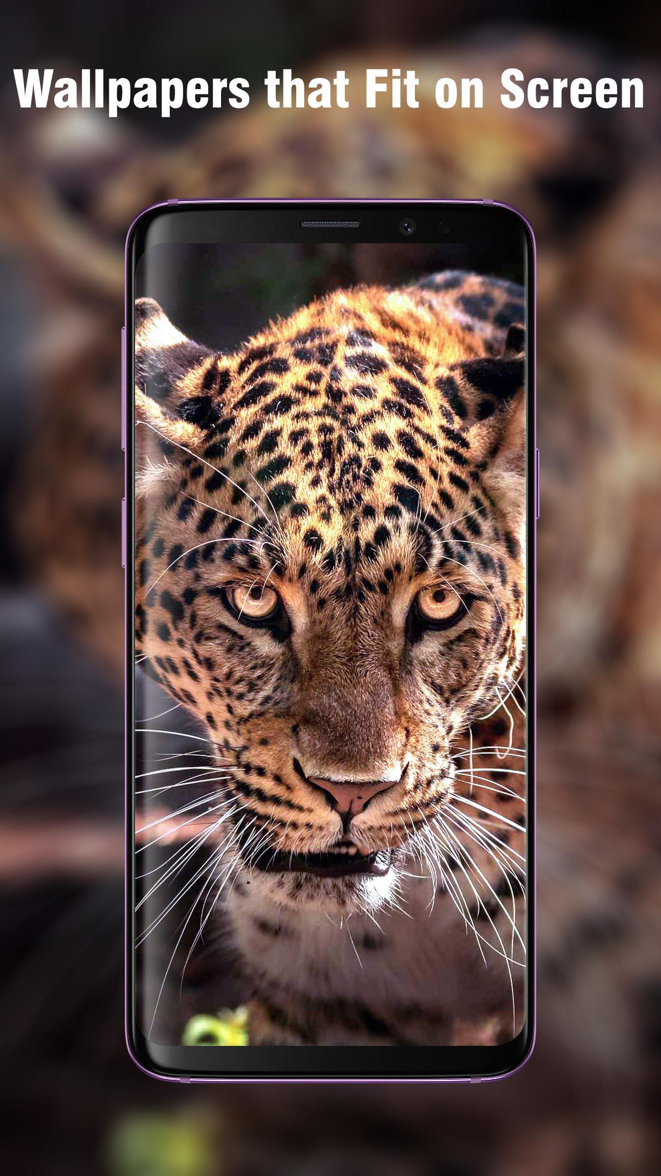 New Hd Animal Wallpapers For Android Apk Download