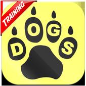 Dog Training & Health Tips icon