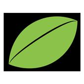 ReVi icon