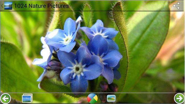 1024 Nature Pictures screenshot 1