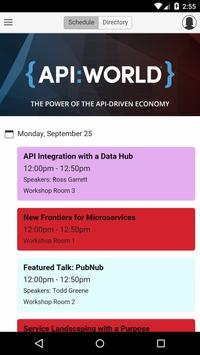 API World poster