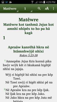 Apinayé - Bible poster