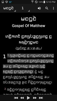 Kayah Li Bible screenshot 4