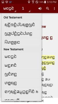 Kayah Li Bible screenshot 5