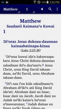 Wapishana - Bible poster