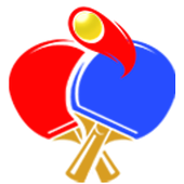 Pingpong3D icon