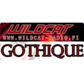 WildCat Radio icon