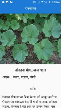 Ranbhajya screenshot 6