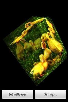 3D Duck poster