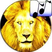 Sounds Of Lion and Tiger Joke icon