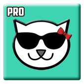Guide for Kitty Live Streaming icon