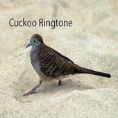 Cuckoo Ringtone icon