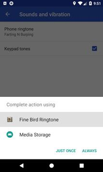 Fine Bird Ringtone: phone ringtone app screenshot 7