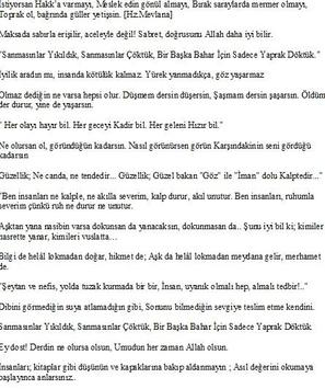 Mevlana'dan Elmas Sözler apk screenshot