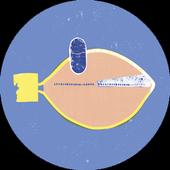 FishPlane Live Wallpaper icon