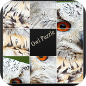 owl picture puzzle icon