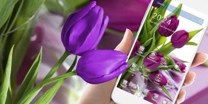 HD Purple Tulip Wallpaper screenshot 3